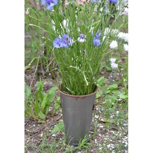 Váza, ZN  065060