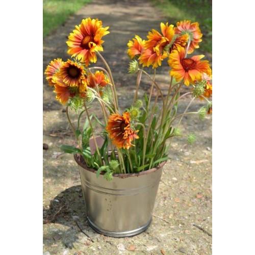 Kvetináč, ZN 068000